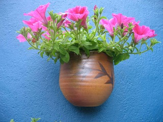 Wall plant pot with pegonias