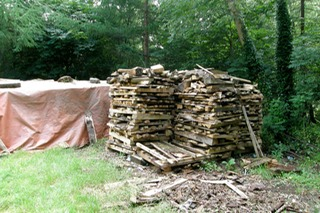 Wood Stacks seasoning outside